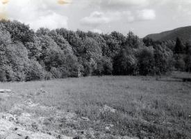 Historia Budowy Leśnego Dworu